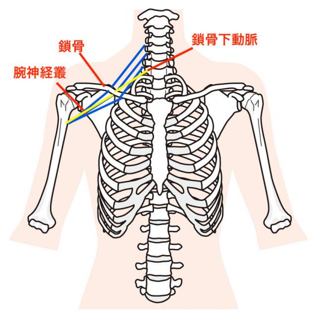 胸郭出口症候群の症状とは?